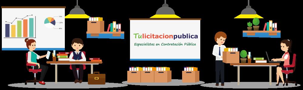 empresa estudio de licitaciones públicas de obras servicios y suministro en España